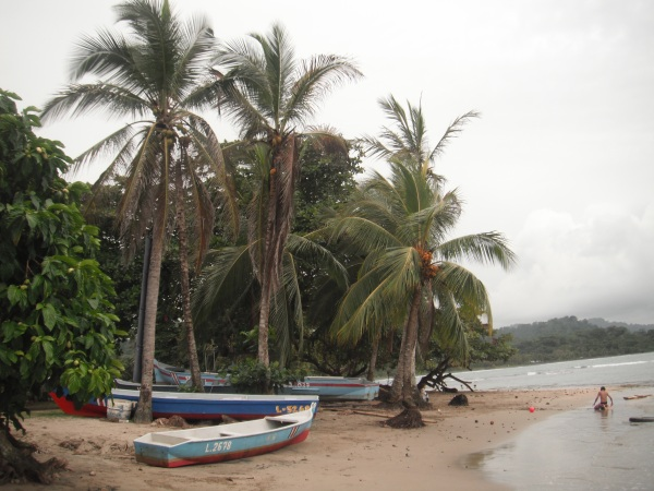 wooden boats and palm trees at the beach of Puerto Viejo de Talamanca, while a child plays in the sand