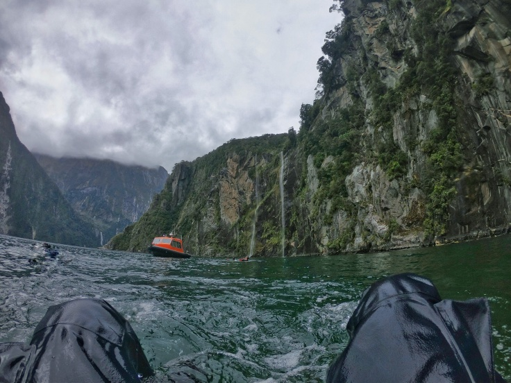 Swimming in a dry Suit in Milford Sound, views of a dive boat and waterfalls